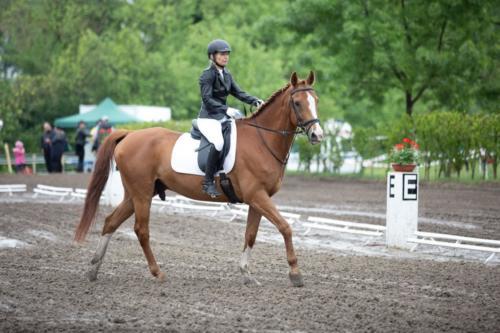 Horze szabadidős lovasverseny